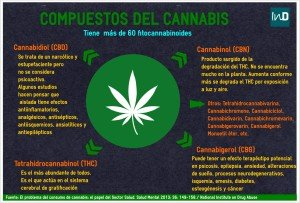 compuestoscannabis