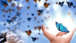 mariposas-570x321